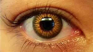Image Gallery light brown eyes