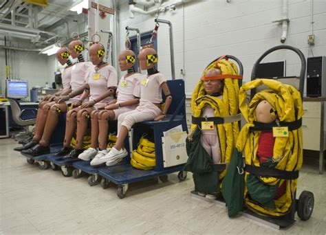 General Motors Crash-test Dummies, Size