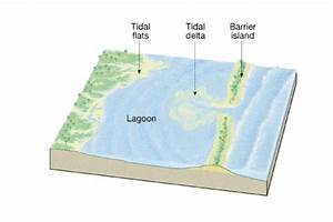 Shoreline Diagrams