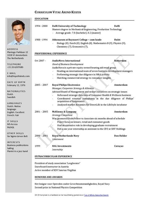 What To Put On A Cv For A by Curriculum Vitae Resume Cv