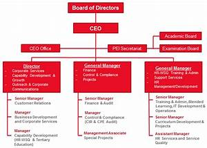 Organisational Chart Hcs Group Singapore S Centre For