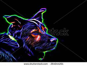Neon Glowing Dog Against Black Vivid Rendition A Dog