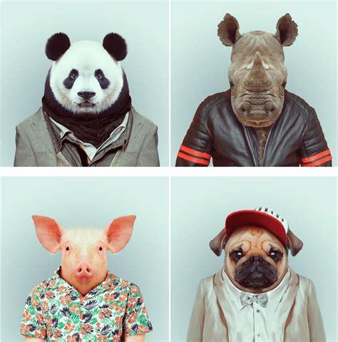 zoo portraits les animaux se mettent sur leur