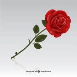 bouquet of roses rosa roja descargar vectores gratis