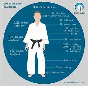 1356 Best Shotokan Karate  U0026 Karate Interests Images On Pinterest