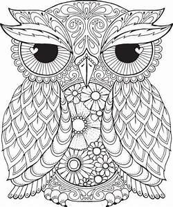 17 Best ideas about Owl Coloring Pages on Pinterest ...