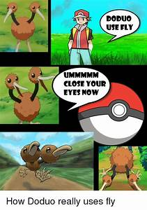 25+ Best Memes About Doduo Used Fly | Doduo Used Fly Memes
