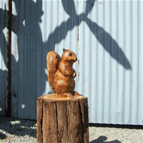 squirrel chainsaw carving carved wooden squirrel