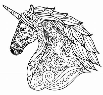 Coloring Unicorn Detailed