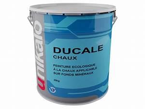 ducale chaux peinture mate a base de chaux en phase With peinture a base de chaux