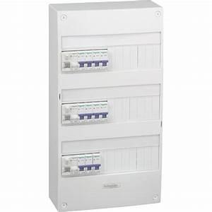 Tableau électrique équipé et précâblé SCHNEIDER ELECTRIC 3 rangées 39 modules Leroy Merlin