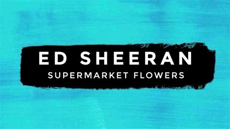Supermarket Flowers (official Music Video