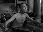 Clifton Webb Laura 1944 | Film festival, Clifton webb ...