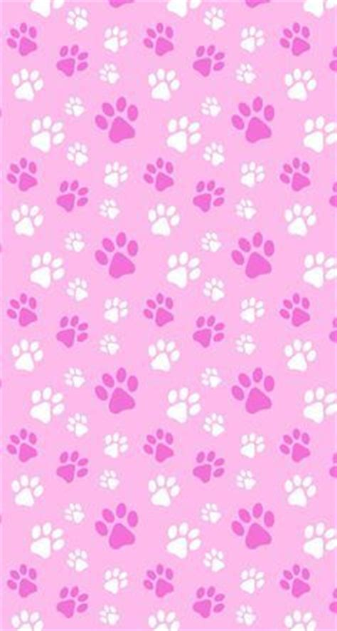 cat paw print wallpaper gallery