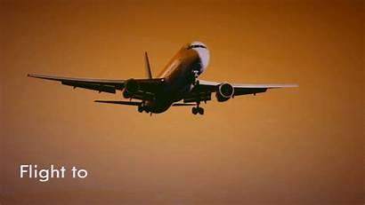 Flight United Airways Travel States Flights Jet