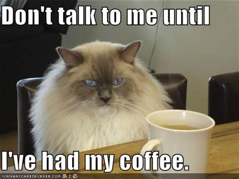 I Don't Have A Problem With Caffeine… The Coffee Bean Zagreb Adresa And Tea Leaf Jakarta Semarang Best Drinks Krups Maker Ec311 Lahore Malfunction Rewards