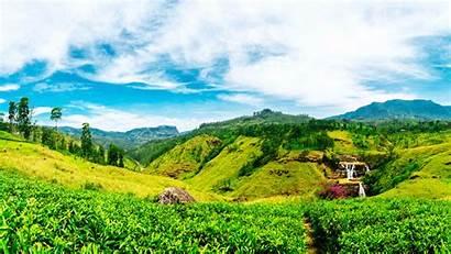 Lanka Sri Desktop Tea Nuwara Eliya Wallpapers