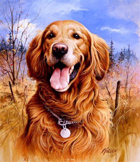 quot that s my quot golden retriever painting by jim killen
