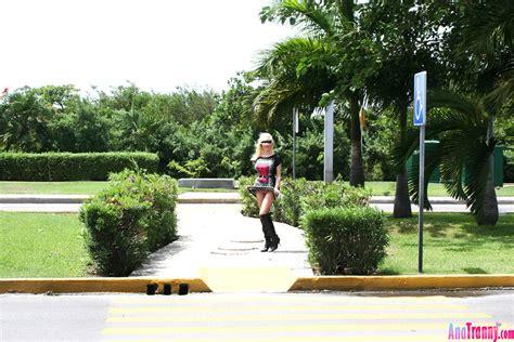 Ana Tranny Anatranny Model Warm Miami Beach Tranny Porn Tape Sex Hd Pics
