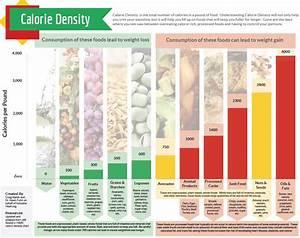 Calorie Density Handout