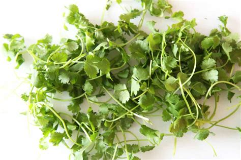 substitute for cilantro replace cilantro with this in a recipe chop happy