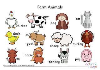 farm animal worksheets