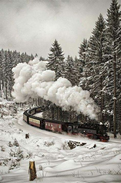 best 25 black forest germany ideas on black forest germany and germany castles