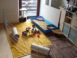 Kaninchengehege Bauen Innen : zimmer kaninchengehege kaninchen ratgeber ~ Frokenaadalensverden.com Haus und Dekorationen