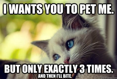 Bite Me Meme - i wants you to pet me but only exactly 3 times and then i ll bite first world problems cat
