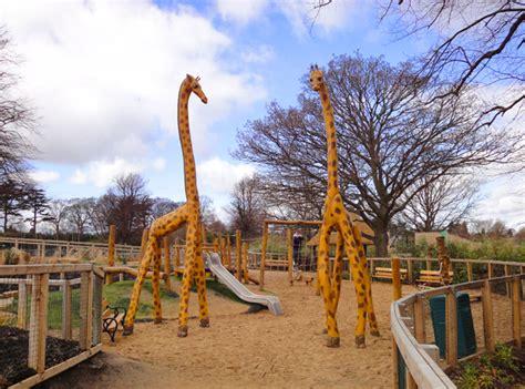 bespoke playground african savanna dublin zoo designed