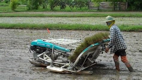 planting rice  machine youtube