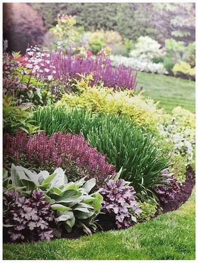 Landscaping Yard Courtyard Stunning Garden Plants Shade
