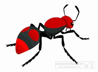 Ant Clipart Insect Velvet Clip Pencil Three