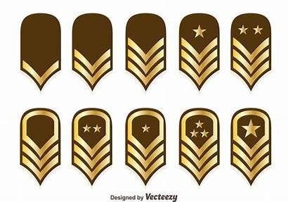 Marine Rank Corps Emblem Vector Vectors Usmc