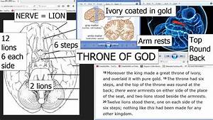 Your Brain Is The Throne Of God
