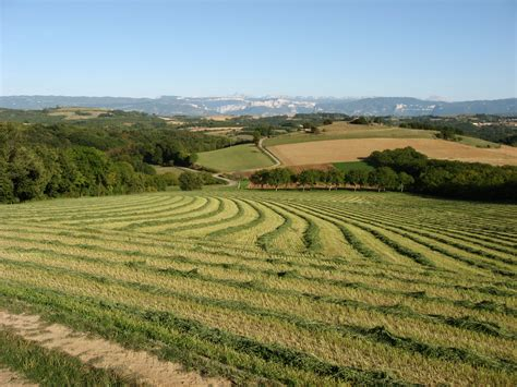 chambre agriculture ain accueil26 synagri com