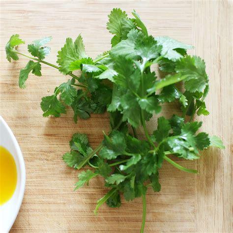 herbe aromatique cuisine ingrédients les herbes aromatiques asiatiques en quête