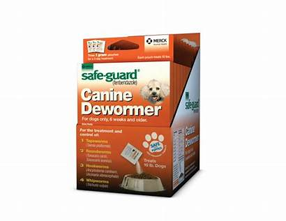 Guard Safe Canine 1gm 3pk Supplies Cat