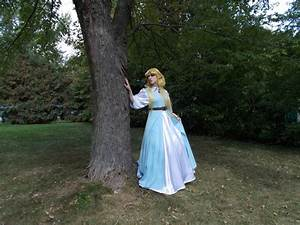 The North Castle Zelda Cosplay Gallery Musica