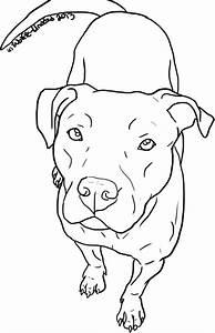 Principales 25 ideas increíbles sobre Tatuaje de pitbull ...