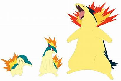 Cyndaquil Typhlosion Quilava Base Selenaede Pokemon Fire