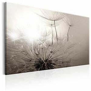 Bilder Xxl Leinwand : leinwand bilder xxl kunstdruck wandbilder pusteblume natur grau b b 0241 b a ebay ~ Frokenaadalensverden.com Haus und Dekorationen