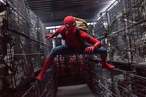 Spider Man Homecoming, HD Movies, 4k Wallpapers, Images ...