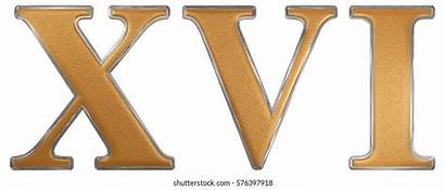 Roman Numerals Numeral Gold Xvi 3d Sixteen