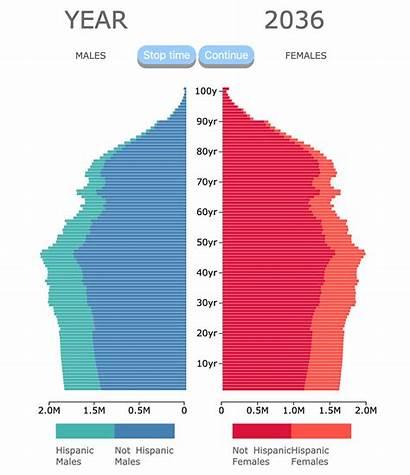 Population Ethnicity Pyramid Pyramids Race Medium Why