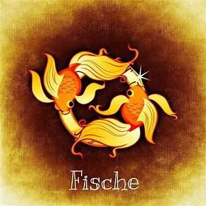 Sternzeichen Fisch Und Krebs : fische dekadenstein passend zum sternzeichen fische ~ Frokenaadalensverden.com Haus und Dekorationen