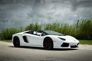 Lamborghini Gallardo 2014 White - image #49