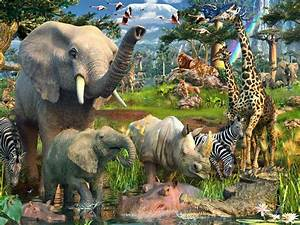 Jungle Animals Twenty Two wallpapers | Jungle Animals ...