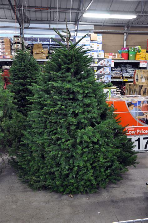 dispose   christmas tree  dallas fort worth