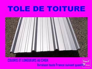 Tole De Bardage Brico Depot : tole toiture brico depot ~ Melissatoandfro.com Idées de Décoration